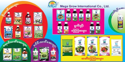 Mega grow international co ltd golden key co ltd for Portent international co ltd